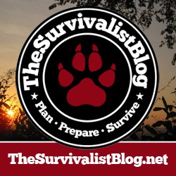The Survivalist Blog