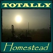 Totally Homestead