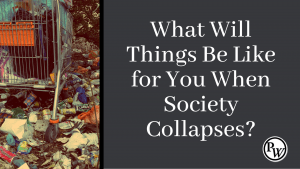 10 Survival Rules When Society Collapses: Lessons from Venezuela